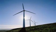 百万千瓦风电无法并网 电网称因生态保护通道建设受阻