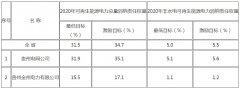 贵州省能源局关于印发《贵州省可再生能源电力消纳实施