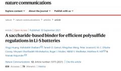 """""""掺了糖""""的锂硫电池可稳定循环逾1000"""
